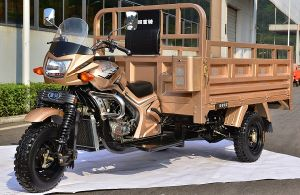 2017 China New Cargo Tricycle Truck 200cc, 250cc, 300cc pictures & photos