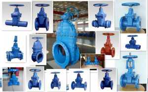 Marine Double Flange Globe Valve with Handwheel pictures & photos