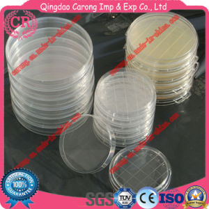 Disposal Sterile Petri Dish Laboratory Petri Dish pictures & photos