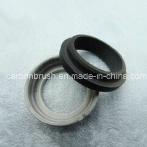 Searching Carbon Sealing Seal Ring for Automobile pictures & photos