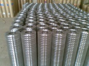 Galvanized Welded Wire Mesh Hot Sale in Guangzhou pictures & photos