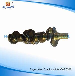 Truck Parts Crankshaft for Caterpillar 3116 3126 4W3498 3114/3204/3208/3406/3408 pictures & photos