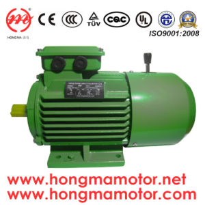 DC Brake Three Phase Induction Motor pictures & photos