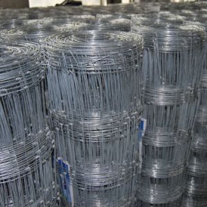 High Quality Galvanized Horse Paddock Fence pictures & photos