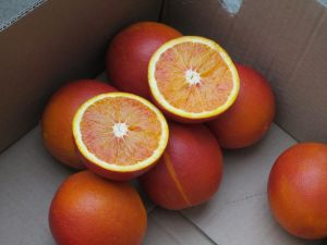Navel Orange pictures & photos