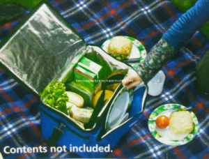 Picnic Cooler Bag (KM4697) pictures & photos