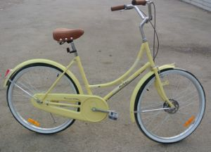 Brazil Hot Sale City Bicycle/Street Bike (FP-LDB-037) pictures & photos