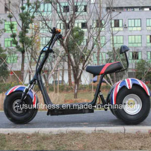 China Manufacturer of Tricycle with Ce pictures & photos