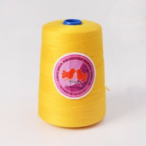 China Wholesale of 20/6 20s/6 Spun Polyester Sewing Thread pictures & photos