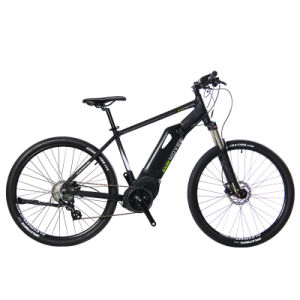 36V/250W Center Motor Ebike Electric Bike MID Drive Man Bike pictures & photos