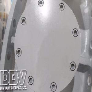 Industrial Qt450 Wormgear Flange Butterfly Valve pictures & photos