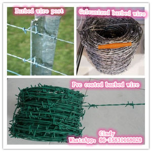 Hot Dipped Galvanized Barbed Wire 2.5mm 200m /Coil pictures & photos