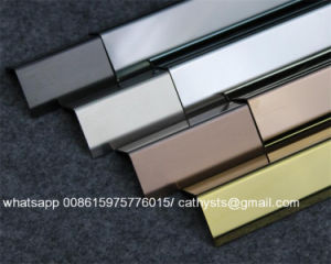 Custom 304 Stainless Steel Bronze Floor Trim with Brush Surface pictures & photos