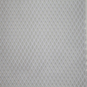 Strong Nylon Polymide Fabric Fishing Net Mesh pictures & photos