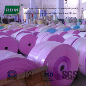 NCR Paper Rolls for Rotary Presses pictures & photos