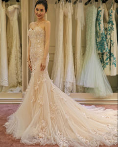 Lace Sleeves Mermaid Champagne Bridal Wedding Dress with Flower Decoration pictures & photos