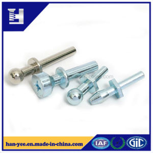 China Supplier Shaped Head Step Fasteners pictures & photos