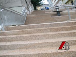 Polished Yellow Rusty G682 Granite Steps/Stairs/Staircase pictures & photos