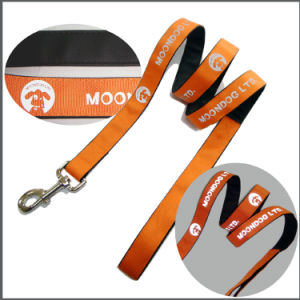 Cute Design Full Size Pet/Cat/Dog Accessories for Dogs pictures & photos