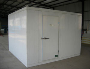 Electric Walk in Freezer Cold Room, Water Cooling Type pictures & photos