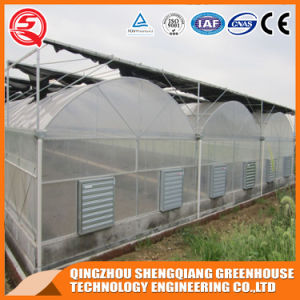 China Supplier Multi-Span Plastic Greenhouse with Cooling System/Hydroponic System pictures & photos