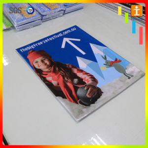 Wholesale Outdoor PVC Vinyl Banner for Advertising (TJ-80) pictures & photos
