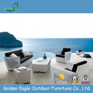 Outdoor Furniture/PE White Rattan Garden Sofa