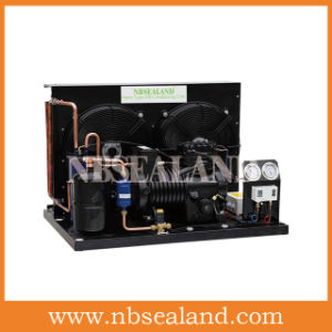 Copeland ZB Condensing Unit for Cold Room pictures & photos