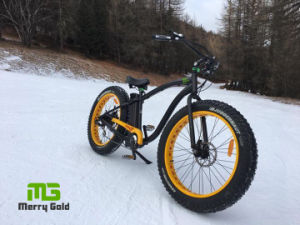 Popular 1000W Fat Tyre E Bike pictures & photos
