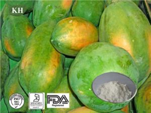 100% Pure Papaya Extract Fruits Juice Powder pictures & photos