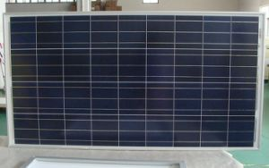 Free Shipping High Quality 100 Watt Solar Panel pictures & photos