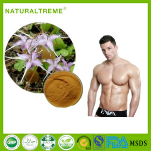 20% Double Icariin Horny Goat Weed Extract Powder pictures & photos