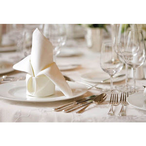 Luxury 100% Cotton Restaurant Hotel Plain Satin Dinner Napkin pictures & photos