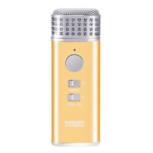 High Qualtiy Amplifier Wireless Microphone Speaker Karaoke Player