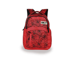 Custom Backpacks for Teenage and Women (LJ-131026) pictures & photos