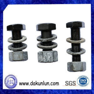 Customized Black Screw with Nut in China pictures & photos
