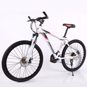 Good Quality Carbon Mountain Bike MTB (MTB-80) pictures & photos