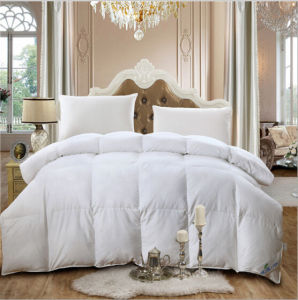 Bedding Hotel White 75% Duck Down Filling Cotton Quilt pictures & photos