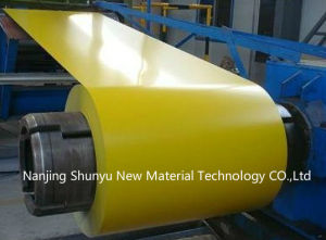 Prepainted Galvanized Steel Sheet/Colour Coated Steel Coil/Wrinkle PPGI pictures & photos