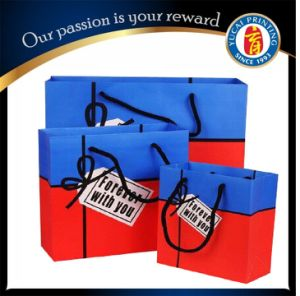 Customized Paper Shopping Bag Clothing Bag pictures & photos