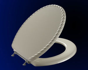 Moulded M45 Toilet Seat
