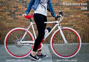 Hot Selling Smart Pie 5! Electric Bicycle Kit / E Bike Kit / Hub Motor 24V/36V/48V 250-1000W pictures & photos