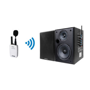 Professional Wireless Mini Microphone and Black Speaker System pictures & photos