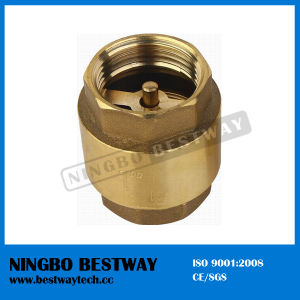 1/4 Inch Brass Spring Check Valve Supplier (BW-C02) pictures & photos