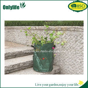 Onlylife High Quality PE Pocktes Garden Planter pictures & photos