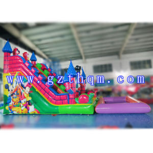 Inflatable Water Slide/Inflatable Swimming Pool Water Slide pictures & photos