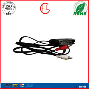 RCA to Scart with Customized Pins pictures & photos