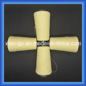 Aramid 1414 Twisted Yarn pictures & photos