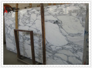 Arabescato Corchia White Marble Slab for Wall Cladding/ Flooring Tile pictures & photos