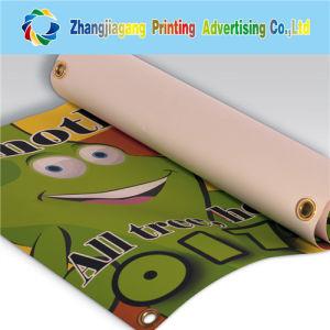 Indoor Flex PVC Banner Printing with Grommet. pictures & photos